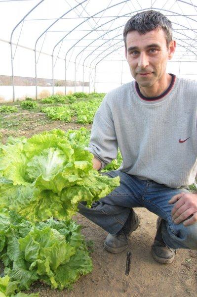 IMG_5911 - salata bunezerica